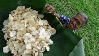Primitive Food ❤ Natural Mushroom Masala Curry by Grandma | Village Life