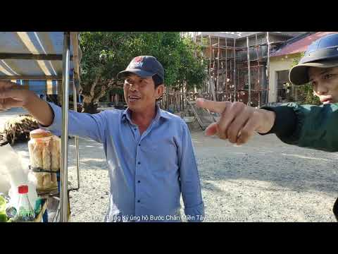 P1 Khám phá Núi Nam Quy An Giang : Sư Thầy Di Sơn Phá Thạch Điều Khiển Rắn Độc
