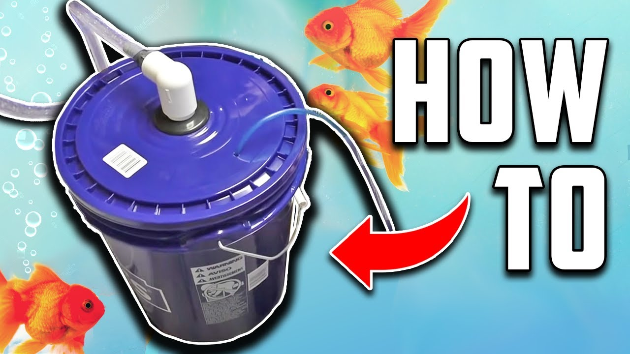 diy aquarium bucket filter fish tank pond canister filter