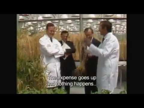 The World According to Monsanto GMO Documentary