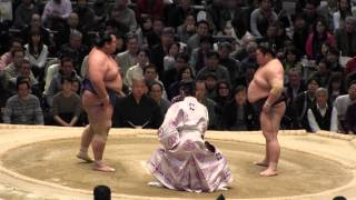 琴奨菊 vs 豪風 の取組。2015春場所8日目。現地オリジナル撮影。 Grand ...