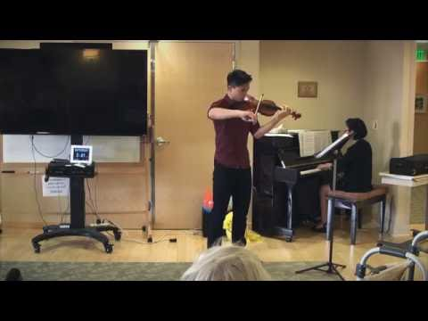 Love Story on Violin and Piano