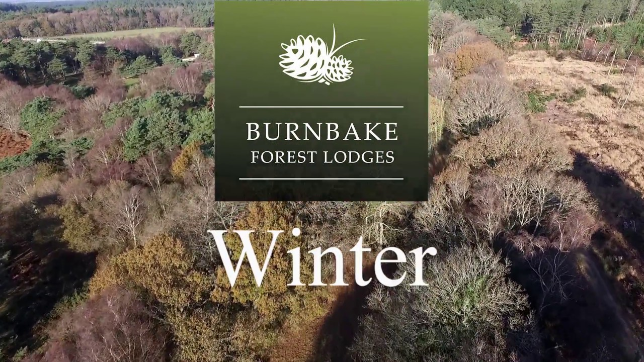 Burnbake Forest Lodges & Campsite - Winter