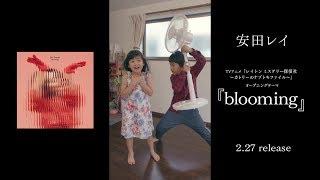 TVアニメ『レイトン ミステリー探偵社 ~カトリーのナゾトキファイル~...