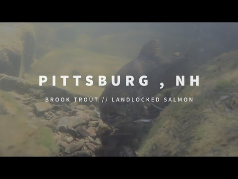 New England Fishing // Pittsburg, NH // Episode 103