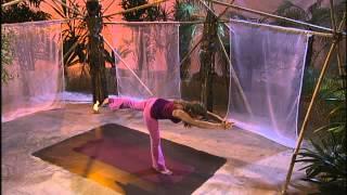 Yogaist - Der Krieger 3 - Vira Bhadrasana 3 mit Inga Stendel