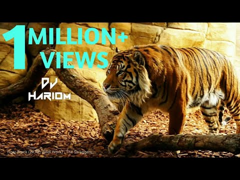 Tiger Track (2K17) (Midi Work) - The Swaggers || DJ HARIOM ||