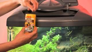 Sera - корма для аквариумных рыбок(Описание основных кормов для аквариумных рыбок от известного немецкого производителя., 2012-09-02T09:27:23.000Z)