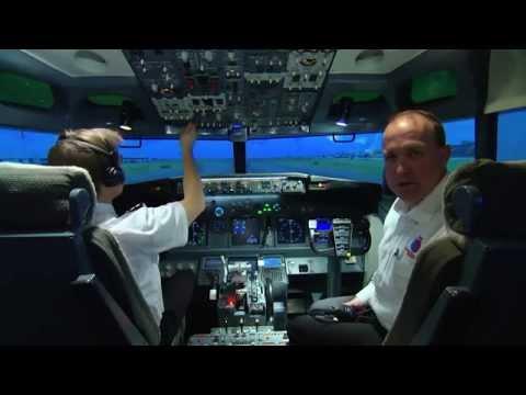 Air Horse Transport - Equine International Air Freight