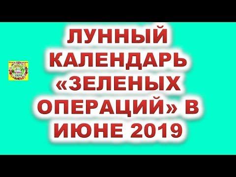 """Лунный календарь """"зеленых операций"""" в июне 2019 года"""