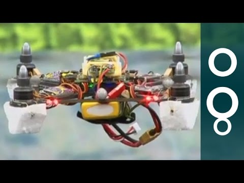 Bee Inspired Drone Can Navigate Autonomously - Hi-Tech