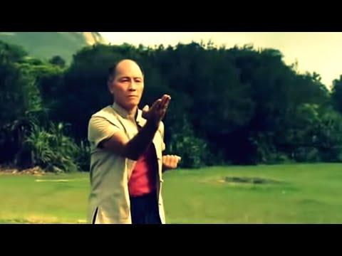WingChun Intro  - Ho Kam Ming Sifu