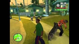 Обзор Cleo script Собаки в Gta San Andreas