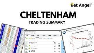 Peter Webb, Bet Angel - Cheltenham trading summary