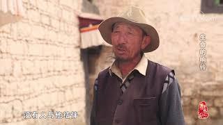 [中华优秀传统文化]生命的响铃| CCTV中文国际