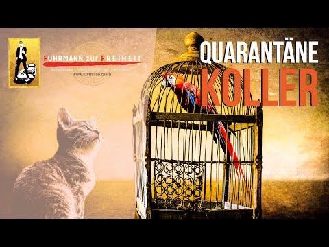 Quarantäne-Koller | Corona-Lockdown - Krise, kollektiver Shotdown, Einkehr, Angst, Mindset & Psyche