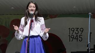Вознесенськ - 9 травня 2017