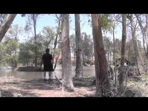 RETRIEVER TRAINING - AKC SENIOR HUNT TEST
