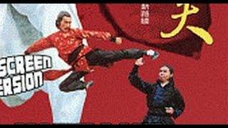 Настоящий боец кунг-фу    (боевик кунг-фу Джон Лиу)