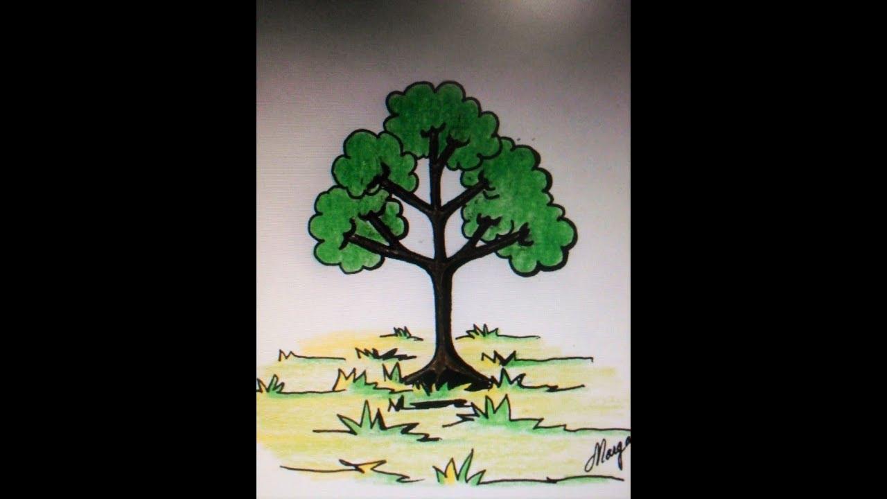 Como Dibujar Un árbol En Caricatura, Muy Muy Fácil