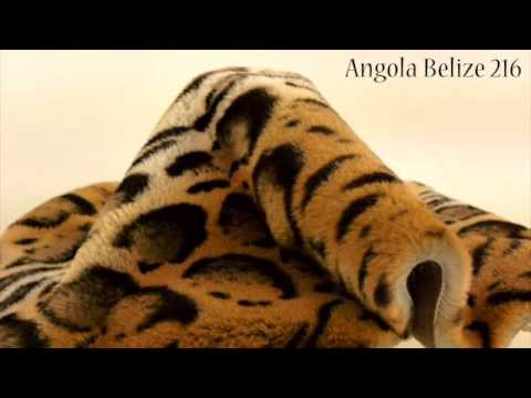 ANGOLA BELIZE 216