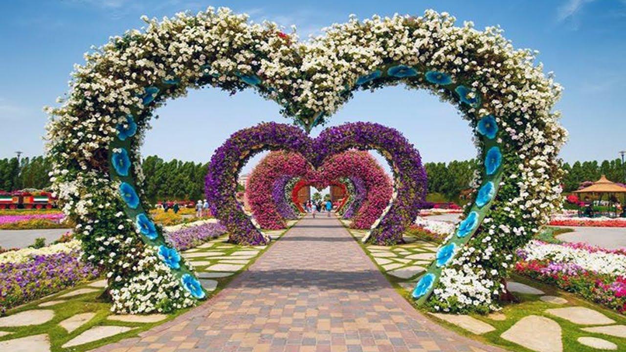 Dubai Miracle Garden 2018 A Mega Flower Garden In Dubai Youtube