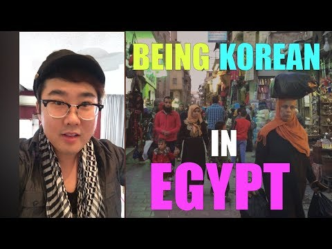 Being Korean in Egypt حياة كوري في مصر | The Daily Oppa
