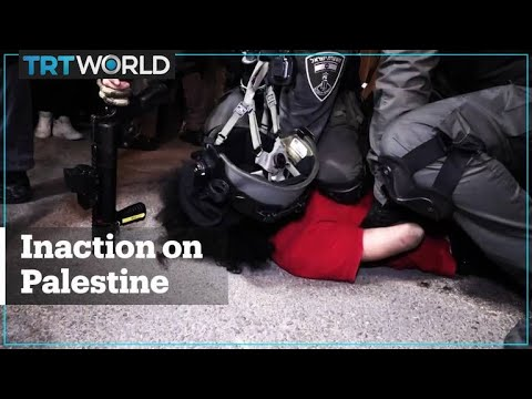 Has the world done enough to help Palestine?