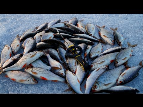 Ловля плотвы на чертика. Зимняя рыбалка на безмотылку - YouTube