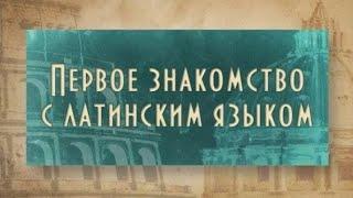Латинский язык. Урок 1.3. Латинские слова в русском языке