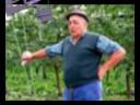 contadino toscano