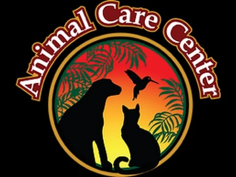 Practice Owner Incubator Internship - Animal Care Centers of Cincinnati