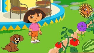 Dora The Explorer - La Casa De Dora (朵拉可愛的家)