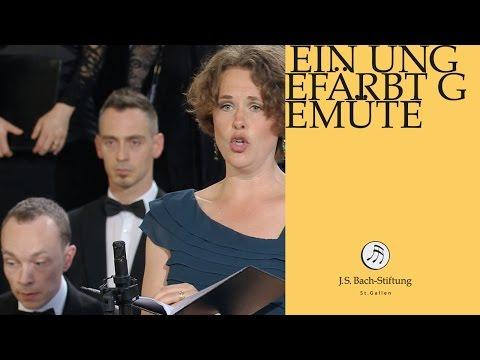 J.S. Bach - Cantata BWV 24 - Ein ungefärbt Gemüte 1 Aria Alto (J. S. Bach Foundation)