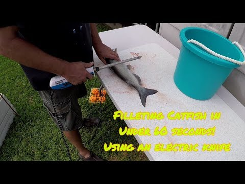 How To | Using an electric knife to quickly fillet catfish