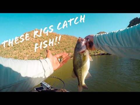 TOP 3 RIGS You HAVE TO KNOW To Fish In ARIZONA!