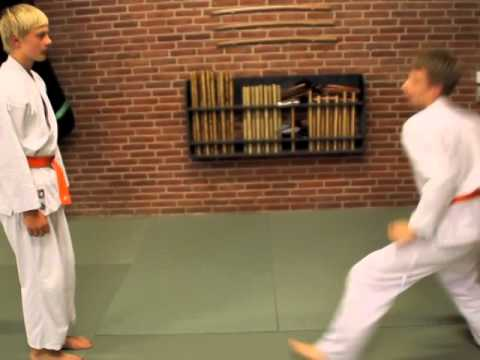 Basic Ju-Jitsu techniques, Hedensted (Denmark)