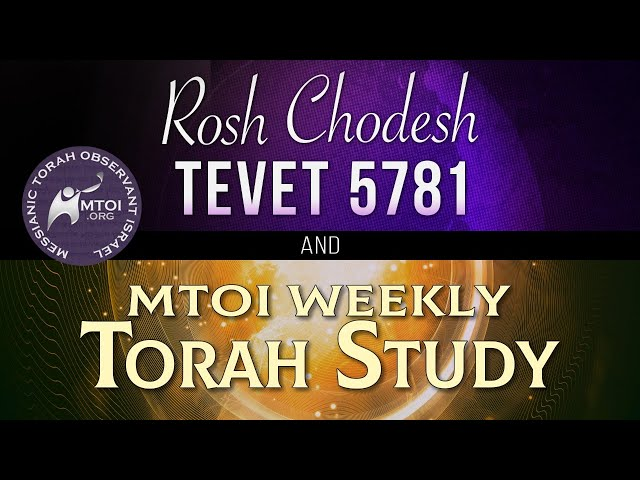 MTOI Weekly Torah Study | Miketz | Genesis 41 – 44:17