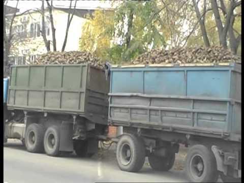 Теория ПДД : Перевозка грузов .