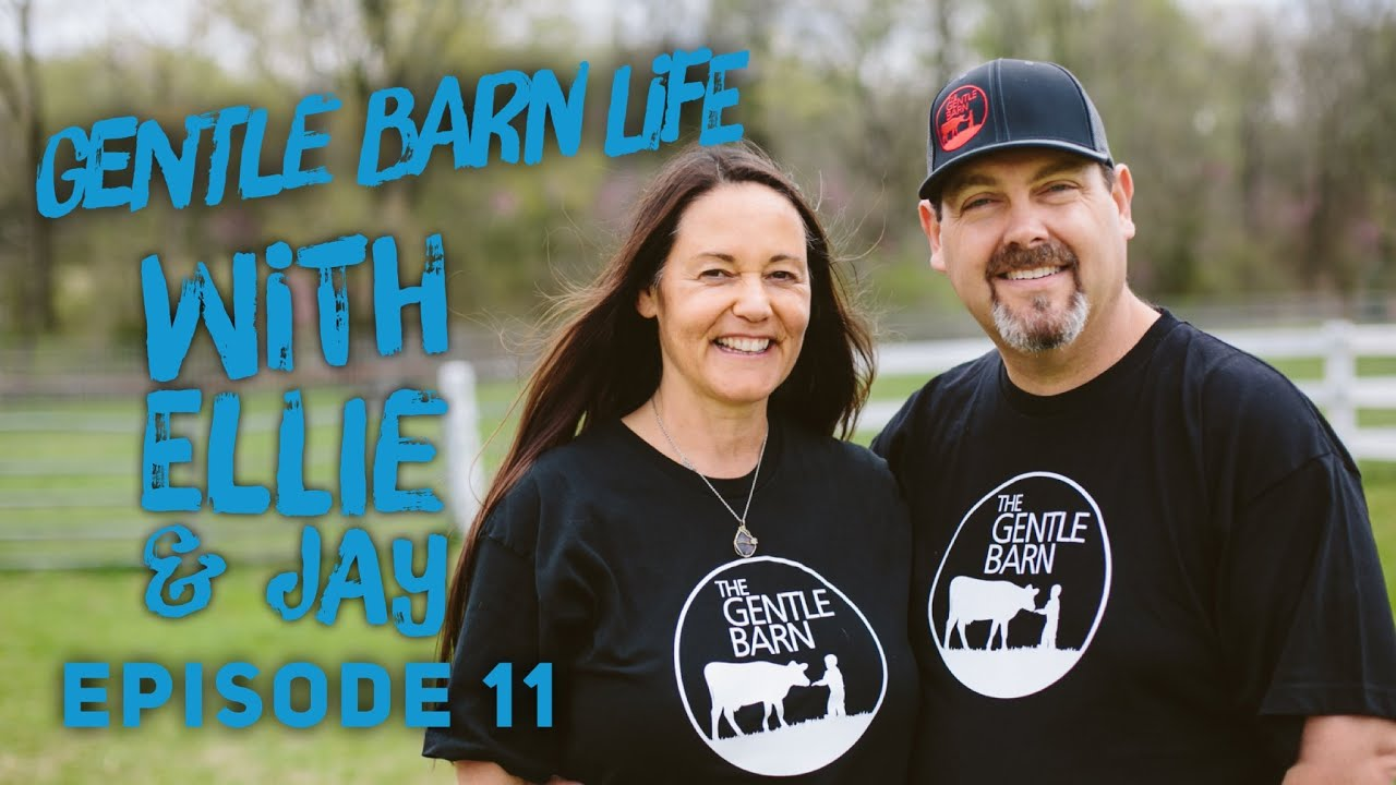 Gentle Barn Life with Ellie & Jay Episode 11