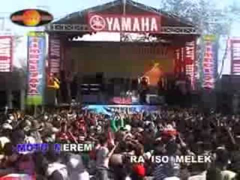 search-download-eny-sagita-ngamen-6-free-music-search-engine-for-download-or-play-mp3-+lyrics-4