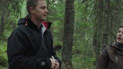 Metsätalousinsinööri