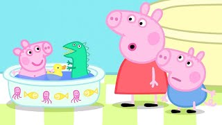 Peppa Pig Official Channel |Peppa Pig's Best Season 4 Moments