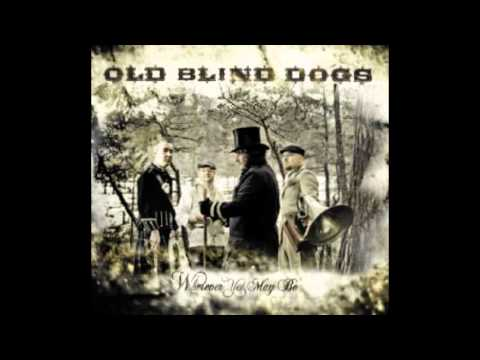 old-blind-dogs-desperate-fishwives-acdulahdiny
