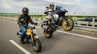Honda Monkey vs. BMW R1250GSA. Crazy Review