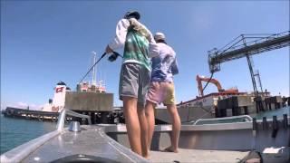 MoretonBay Kingfish Action!