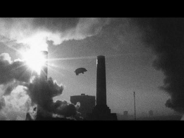 Ремикс альбома Pink Floyd «Animals» от Джеймса Гатри поступит в продажу