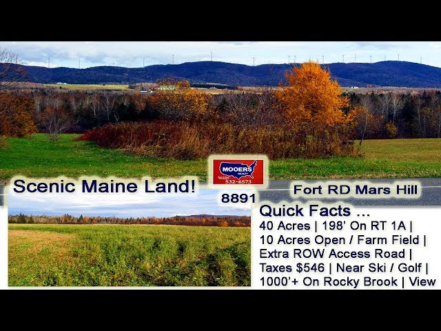 Farm Land For Sale In Maine | 40 Acres Fort RD Mars Hill ME MOOERS REALTY #8891