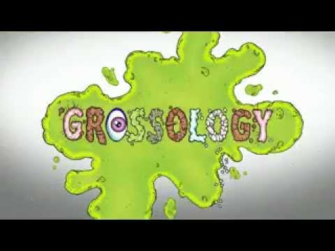 Grossology - The (Impolite) Science of the Human Body at Minnesota Childrens Museum