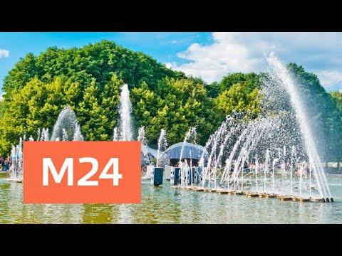Москвичей ожидают кратковременные дожди и 25 градусов тепла - Москва 24